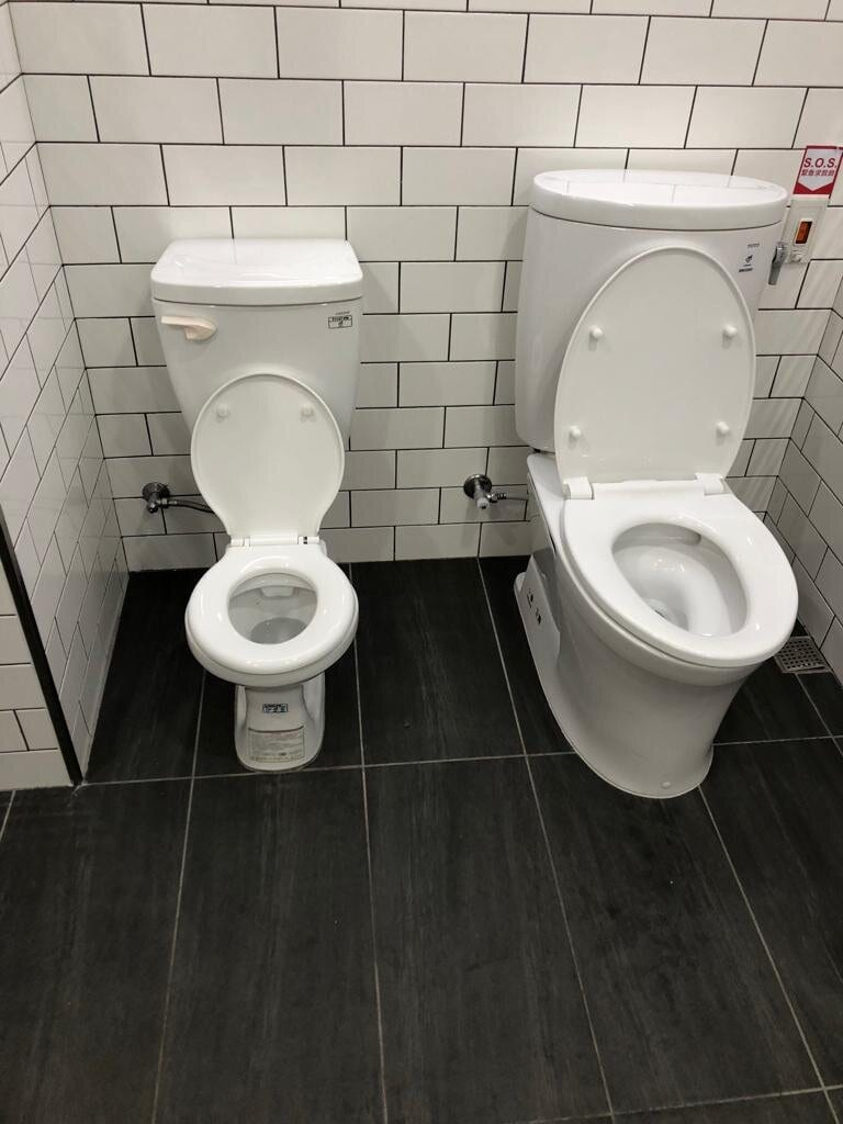 2 toilets in one stall